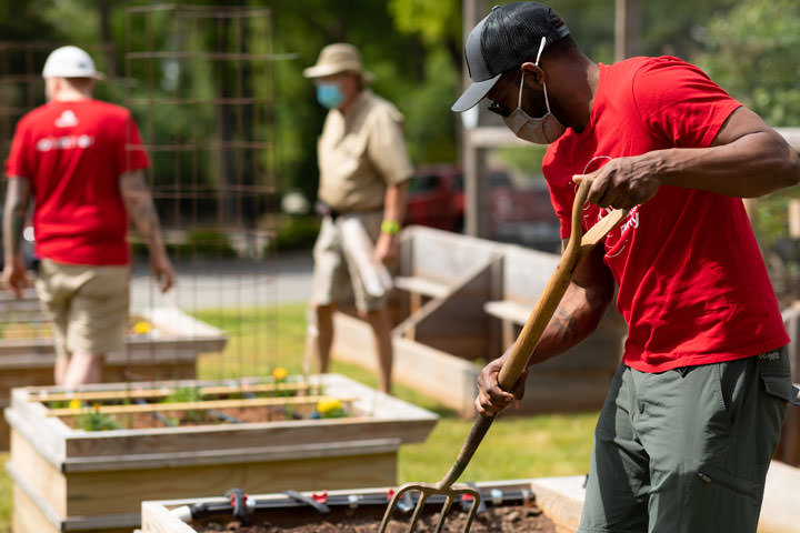 Red Hat volunteers cultivate vegetables in a community garden.