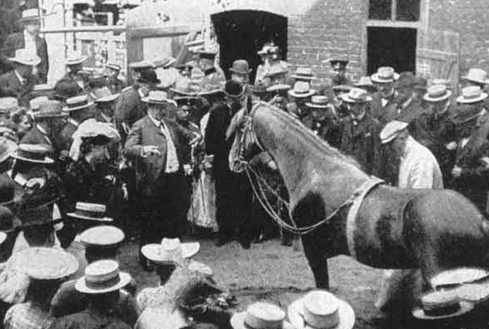 Man presenting horse to crowd of onlookers in 1904