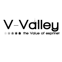 V-Valley logo