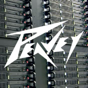 Peavey logo on image of soundboard