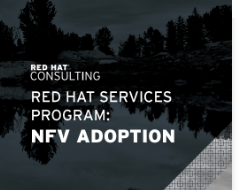 Red Hat services program: NFV Adoption