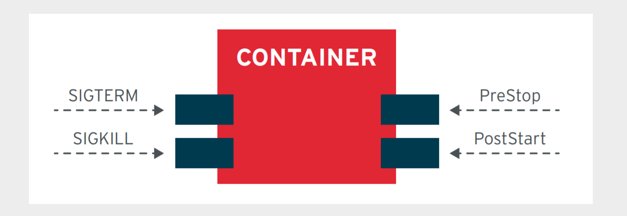 Figure 3. A container providing APIs and conforming to platform events