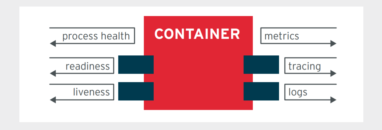 Figure 2. A container with multiple observability APIs (containers have multiple APIs to enable observability)