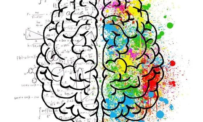 left_brain_vs_right_brain